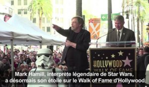 L'acteur de Star Wars Mark Hamill mis à l'honneur à Hollywood