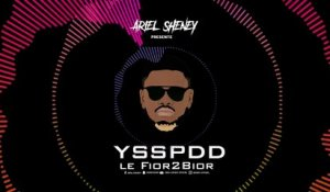 Ariel Sheney - YSSPDD ( Audio officiel )