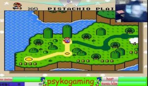 psykogaming super mario land 3 tantaga's return (21/08/2018 02:47)