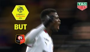 But Mbaye NIANG (28ème) / Paris Saint-Germain - Stade Rennais FC - (4-1) - (PARIS-SRFC) / 2018-19