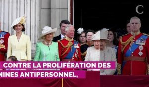 Meghan et Harry, Kate et William : les couples royaux feront l...