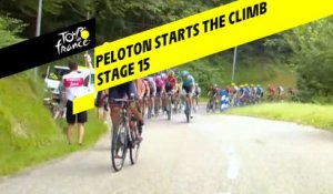 Le peloton a attaqué les premières pentes / The peloton has started the climb - Étape 15 / Stage 15 - Tour de France 2019