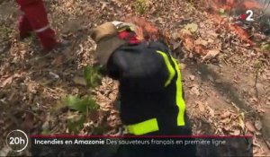 Incendies en Amazonie : des secouristes français en renfort
