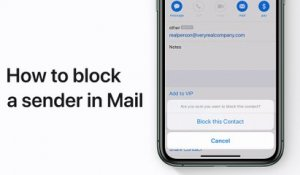 How to block a sender in Mail in iOS 13 on your iPhone, iPad, or iPod touch - Apple Support