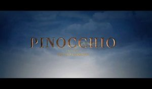 Pinocchio (2019) HD 1080p x264 - French (MD)
