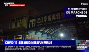 Covid-19: les origines d'un virus