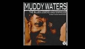 Muddy Waters - Rock Me [1956]
