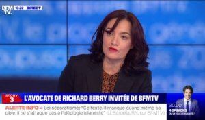 "Richard Berry ""conteste absolument des faits d'inceste"", selon son avocate"