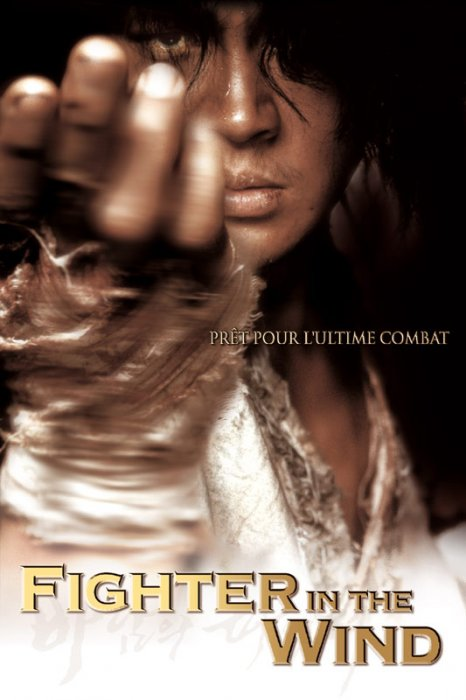 Fighter in the wind : Affiche