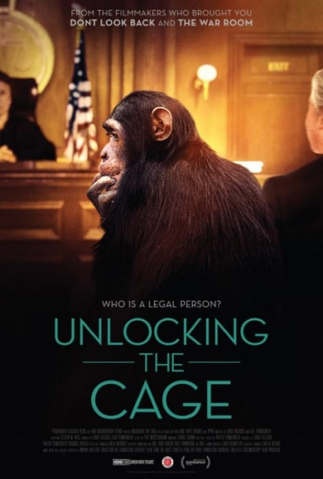 Unlocking the Cage : Affiche