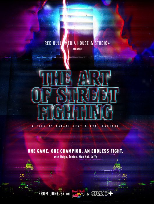 The Art of Street Fighting : Affiche