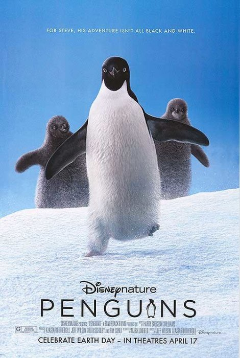 Penguins : Affiche
