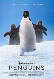 Affiche de Penguins