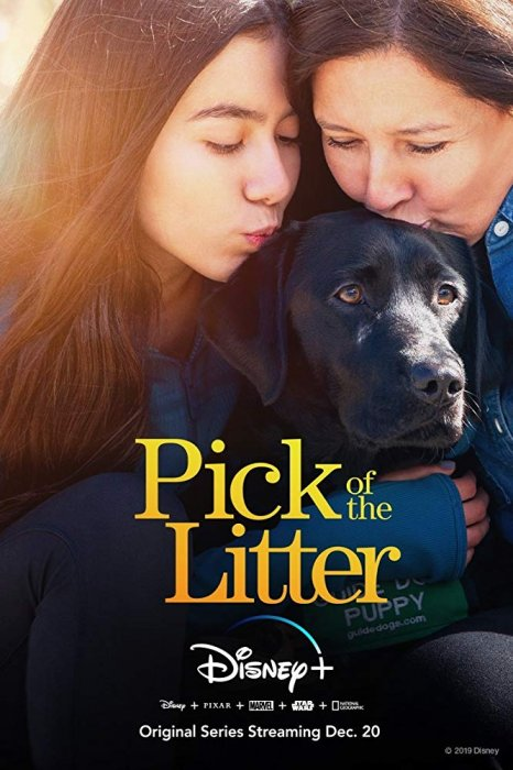 Pick of the Litter : Affiche