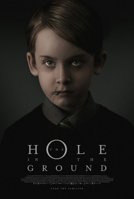The Hole In The Ground : Affiche