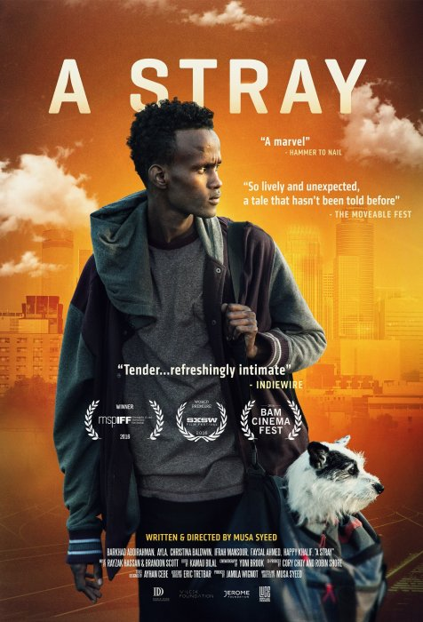 A Stray : Affiche