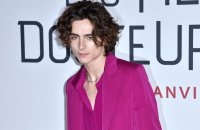 Willy Wonka : Tom Holland ou Timothée Chalamet pour diriger la chocolaterie ?