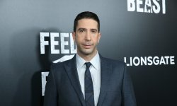 David Schwimmer: sa vie perturbée par Friends