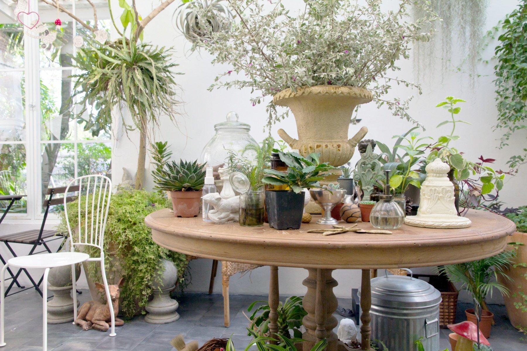 Deco Veranda Interieur véranda, jardin d'hiver la bonne déco pour verdir son